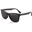 Saulės akiniai 20/20 TR166 C2