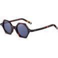 Saulės akiniai 20/20 AT8180 C0