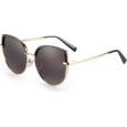 Saulės akiniai 20/20 MD1861 C1 (59)