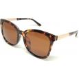 Saulės akiniai PRIUS C112 C2